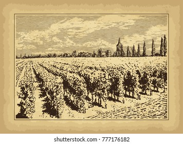 Hand drawn landscape. Antique house, garden, vineyard. Old craft paper texture. Abstract nature background. Template for your design works. Engraved style vector illustration.