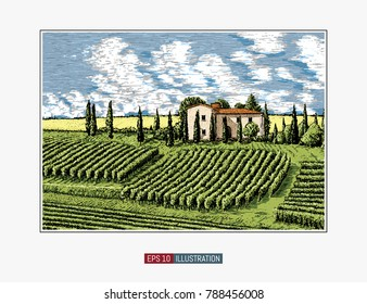 Hand drawn landscape. Antique house, garden, vineyard. Abstract nature background. Template for your design works. Engraved style vector illustration.