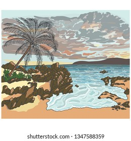 Hand drawn landscape with silhouette palm tree on beach under sunset sky background. Nature concept.