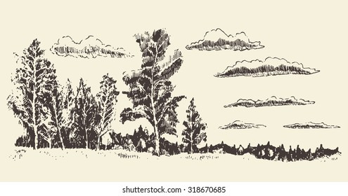Hand drawn landscape with trees, meadow and clouds, vintage vector illustration