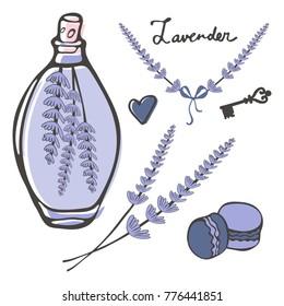 Hand drawn lavender set