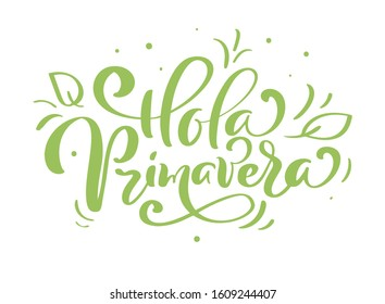 Hand drawn lettering Hola primavera in Spanish. Hello Spring vector illustration. Spring green leaves and grass greeting card with calligraphy