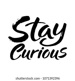 Hand drawn lettering. Ink illustration. Modern brush calligraphy. Isolated on white background. Stay curious. Vector