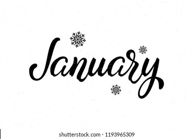 Image result for january images