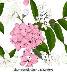 hand drawn lilly pilly flower and riberry,australia native plant seamless pattern in vector