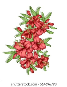 Hand drawn lily flowers. Decorative royal lilies composition. Tattoo or t-shirt design