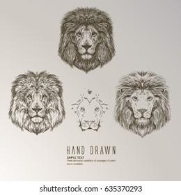 Hand drawn lion head.