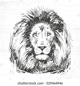 hand drawn lion head. See also other animals