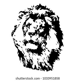 Hand drawn Lion illustration. Vector for logo,  t shirt printing, graphic tee and printed tee.