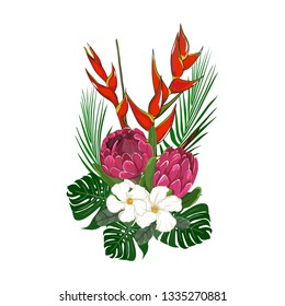 hand drawn lobster claw and red ice waratah with white flower element in vector illustration