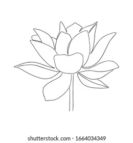 Hand drawn lotus flower line art illustration. Outline floral drawing. Water Lily vector design. Yoga concept
