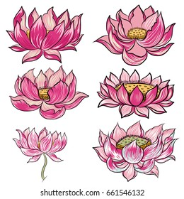 Hand drawn lotus flower vector set ,ping lotus isolate on white background.flower of budhish