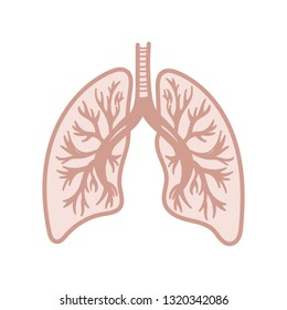 Hand drawn lung on white background