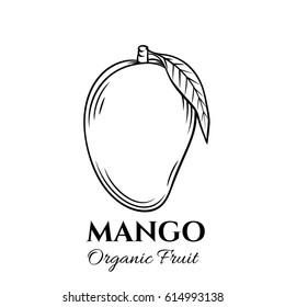 Hand drawn mango icon. Vector badge fruit in the old ink style for brochures, banner, restaurant menu and market