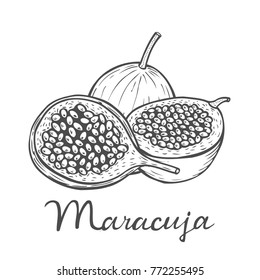 Hand drawn Maracuja passion fruit, bunch. Organic nutrition healthy food. Engraved exotical vintage retro