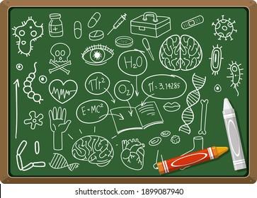 Hand drawn medical science element on chalkboard illustration