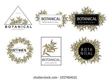 Hand drawn minimal floral botanical classic logo design template