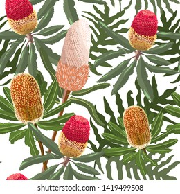 hand drawn mixed kinds of banksia,australia native flower seamless pattern on white background