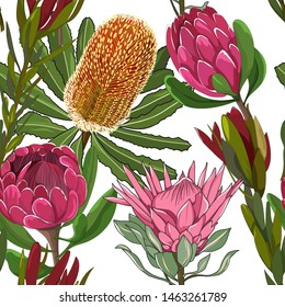 hand drawn mixed kinds of banksia,waratah and protea,australia native wild flower seamless pattern on white background
