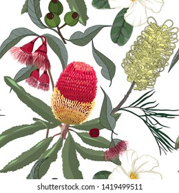 hand drawn mixed kinds of banksia,yellow grevillea and gumnut,australia native flower seamless pattern on white background