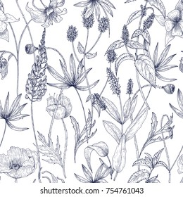 Hand drawn monochrome floral seamless pattern with gorgeous vintage wild flowers,  herbs and herbaceous plants on white background. Botanical vector illustration in antique style.