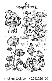 Hand drawn monochrome illustration set of mushrooms, ink art, line art, mushroom with snail, mushrooms on tree, one line style, isolated, fairytale, brushpen calligraphy, for coloring book