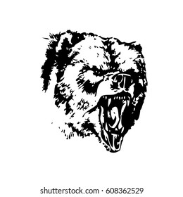 Hand drawn monotonous illustration of an Bear. Silhouette of an Bear in a natural environment. Vector illustration.