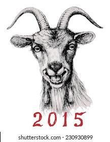 Hand drawn muzzle smiling goat.