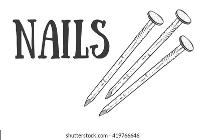 Hand drawn nail heads vector sketch. Doodle drawing. Vector sketch house remodel tool. Home repair service. Flat style toola for building