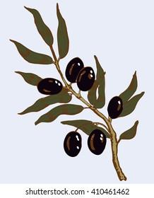 hand drawn olive branch vector illustration