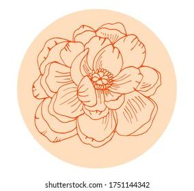 Hand drawn orange peony flower outline vector.  Floral illustration. Botanical ink pen drawing for modern decor, cards, logo.