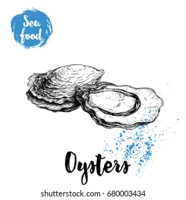 Hand drawn oysters composition. Seafood sketch style illustration. Fresh marine mollusks in closed and opened shells.