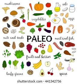 Hand drawn paleo diet food isolated on white background. Vegetables, fruits, berries, nuts, seeds, leafy greens, meat, seafood, fish, mushrooms, spices, oils.