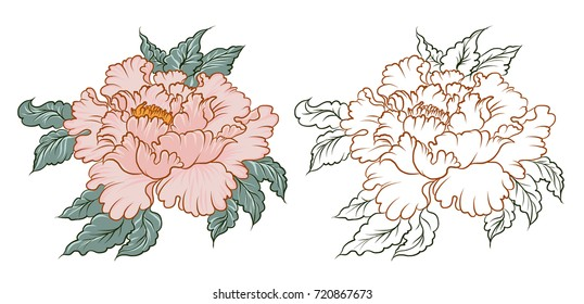 Hand drawn Peony flower Chinese style vector art.Chinese tattoo design pink Peony flower.