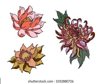 Hand drawn Peony flower,Lotus and chrysanthemum flower Chinese style vector art.Chinese tattoo design pink Peony flower.