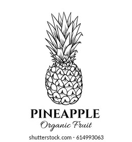 Hand drawn pineapple icon. Vector badge fruit in the old ink style for brochures, banner, restaurant menu and market