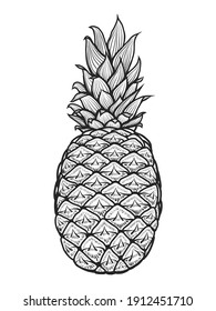 hand drawn pineapple. Vector illustration. Isolated on white. Doodle. Sketch.