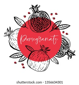 Hand drawn pomegranate composition with fruit and plant. For cooking, cosmetic package design. Vector illustration.