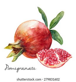 Hand Drawn Pomegranate, Watercolor Painting On White Background, Vector Illustration For Food Design.