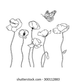 Hand drawn poppy flowers and a butterfly, vector illustration.