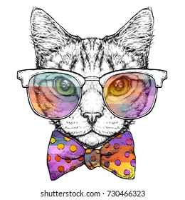 Hand drawn portrait of Cat in glasses with bow tie. Vector illustration isolated on white