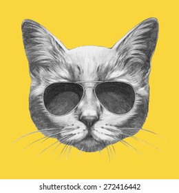 Hand drawn portrait of Cat with sunglasses. Vector isolated elements.