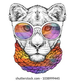 Hand drawn portrait of cute Lioness in glasses and scarf. Vector illustration isolated on white