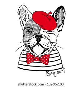 Hand drawn portrait of french bulldog dressed up in french style isolated on white