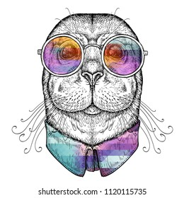 Hand drawn portrait of Funny Seal in glasses. Vector illustration isolated on white