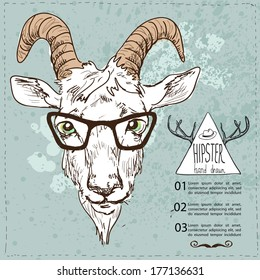 Hand Drawn Portrait of hipster goat.Vector sketchy illustration, Sketchy illustration hand drawn, vector object isolated, realistic image