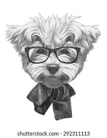 Hand drawn portrait of Maltese Poodle with glasses and bow. Vector isolated elements.