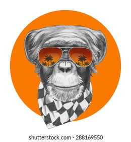 Hand drawn portrait of Monkey with scarf and mirror sunglasses. Vector isolated elements.