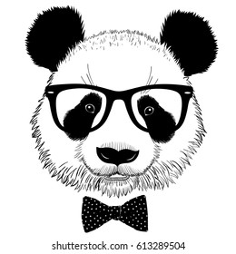 Hand drawn portrait of panda with sunglasses and bow tie. Vector isolated illustration