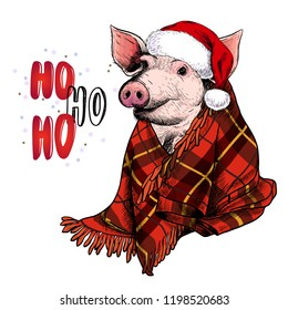 Hand drawn portrait of pig wearing deer horns and blanket. Vector Christmas illustration. Colore piglet. Xmas, New Year symbol. Print for greeting card, party flyer, invitation banner. Winter holiday